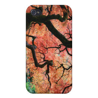 Japanese maple 1 case for iPhone 4