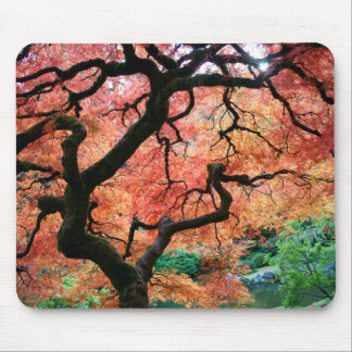 Japanese maple 1 mouse pad