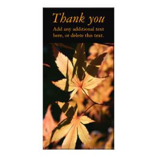 Japanese Maple (1) - Thank You - Autumn Colors Personalized Photo Card