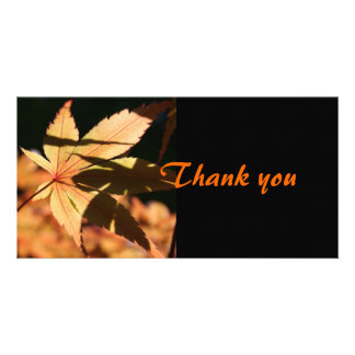 Japanese Maple 2 Thank You Photo Card