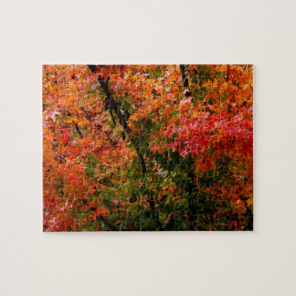 Japanese Maple in Fall Jigsaw Puzzle