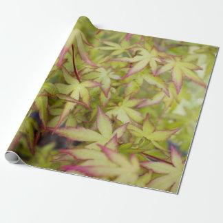 Japanese Maple Leaf Gift Wrap