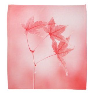 Japanese Maple Leaves in Red Bandana