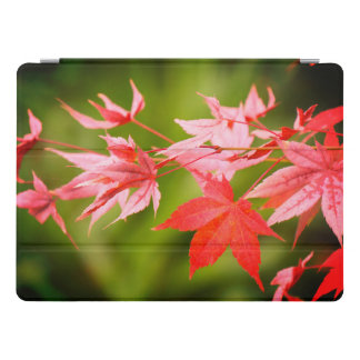 Japanese Maple Leaves iPad Pro Cover