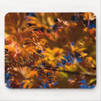 Japanese Maple Leaves Mouse Pad