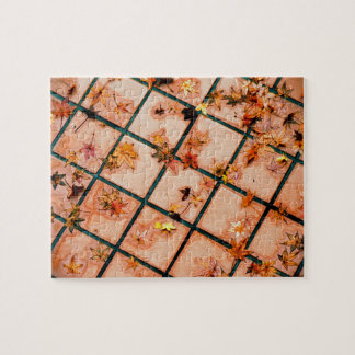 Japanese Maple Leaves on Tiled Ground Puzzle