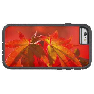 Japanese Maple Leaves Tough Xtreme iPhone 6 Case