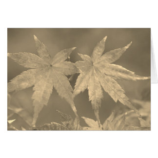 Japanese Maple Leaves Vintage Style Card