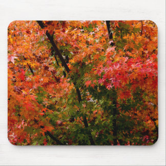 Japanese Maples in Fall Mouse Pad