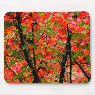 Japanese Maples Mouse Pad