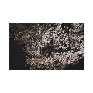Japanese Sakura at Night. Cherry Blossoms. Spring. Canvas Print