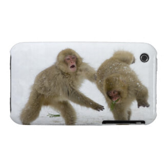 Japanese Snow Monkey cubs playing on snow iPhone 3 Cover