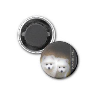Japanese Spitz Puppies Magnet