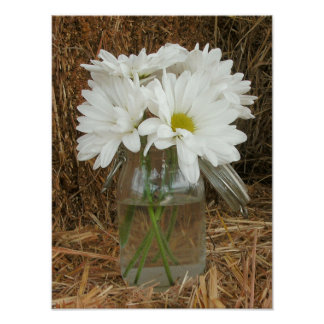 Jar Of Daisies & Hay Poster