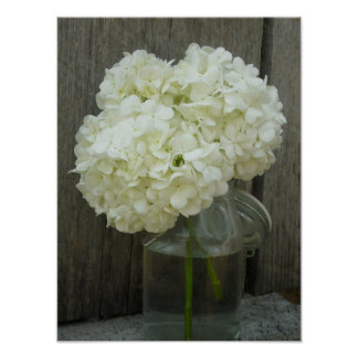 Jar Of Hydrangeas & Barn Wood Poster