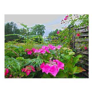 Jardin anglais 2 cartes postales