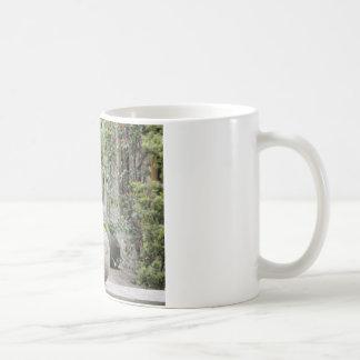 Jardin anglais - boule en pierre tasse à café