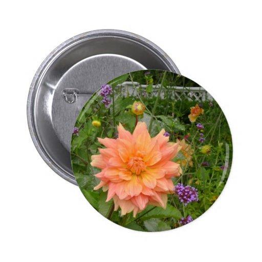 Jardin anglais badges