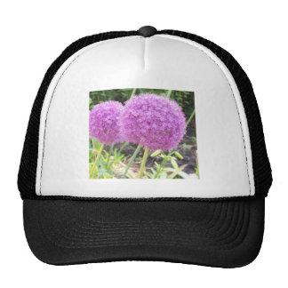 Jardin anglais floral casquettes