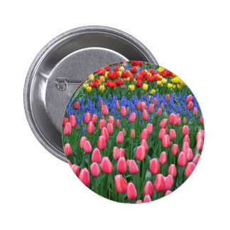 Jardin coloré de tulipe de ressort pin's avec agrafe