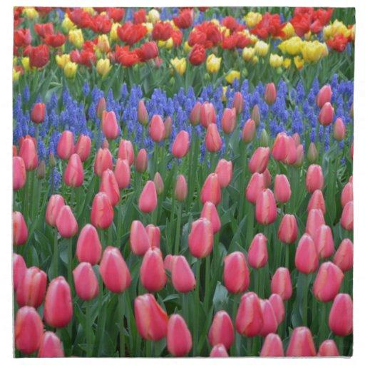 Jardin coloré de tulipe de ressort serviettes