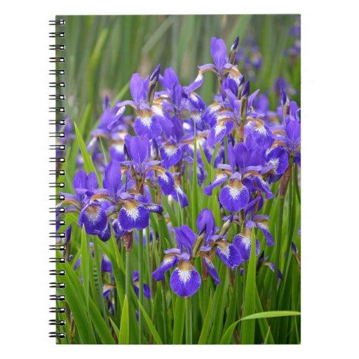 Jardin d'agrément pourpre d'iris carnets à spirale
