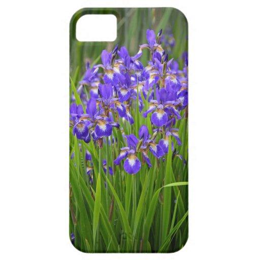 Jardin d'agrément pourpre d'iris coques Case-Mate iPhone 5