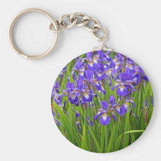 Jardin d'agrément pourpre d'iris porte-clés