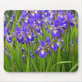 Jardin d'agrément pourpre d'iris tapis de souris