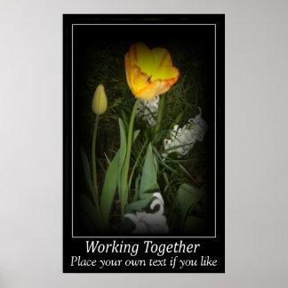 Jardin de ressort de tulipe fonctionnant ensemble  poster