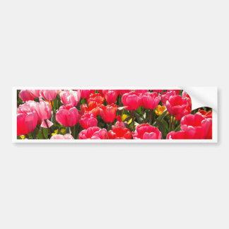 Jardin rose de tulipe autocollant de voiture