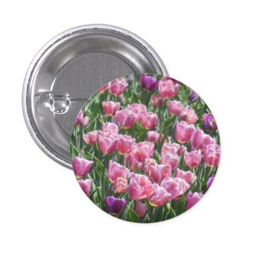 Jardin rose et pourpre de tulipe badges avec agrafe
