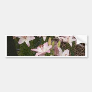 Jardin rose Lillies Autocollant De Voiture