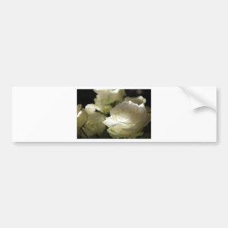 Jardins floraux de destin de fleurs de rose blanc autocollant de voiture