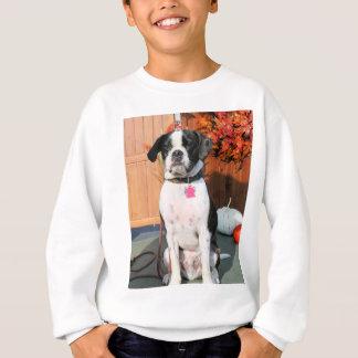 Jarno - Boston Terrier Hybrid Photo-2 Sweatshirt