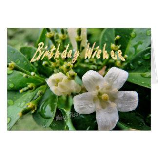 Jasmine Bday-customize it Greeting Card