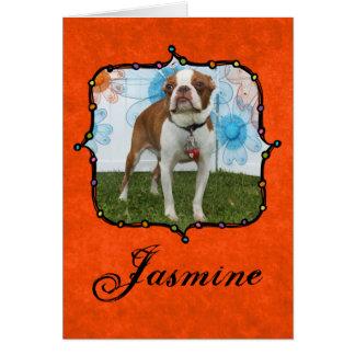 Jasmine - Boston Terrier Greeting Card