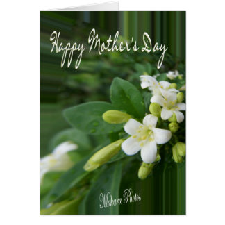 Jasmine-Mother's Day Greeting Card