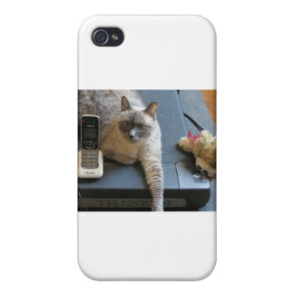 Jasmine the Siamese Cat takes care of business iPhone 4/4S Covers