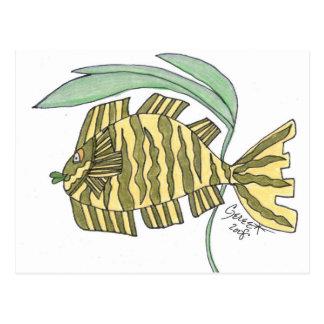 Jasmine Tiger Fish Postcard