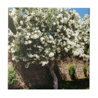 Jasmine Tree In Bloom Tile