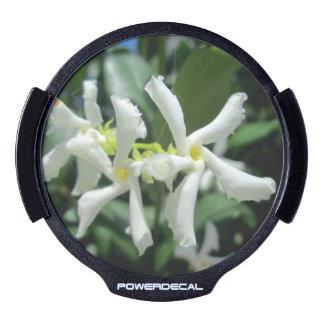 Jasmine White Tubes Flower LED Window Decal