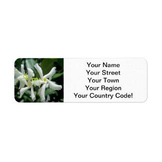 Jasmine White Tubes Flower Return Address Label