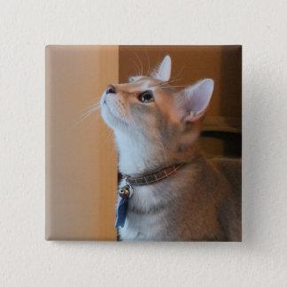 Jasper Square Kitten Photo Button
