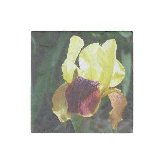Jaune et aimant de marbre d'iris de Bourgogne Magnet En Pierre