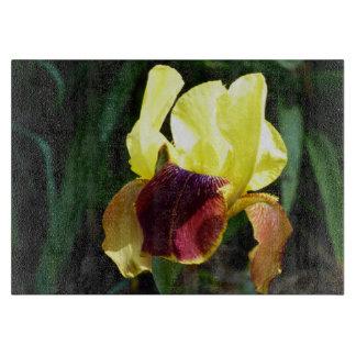 Jaune et conseil de taille du verre d'iris de planches à découper