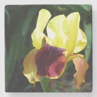 Jaune et dessous de verre de marbre d'iris de dessous de verre en pierre
