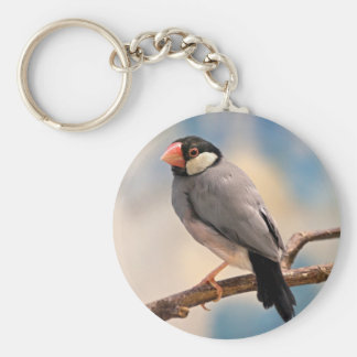 Java Finch Keyring Basic Round Button Keychain