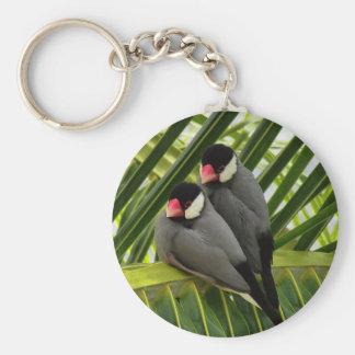 Java Sparrow Keychain
