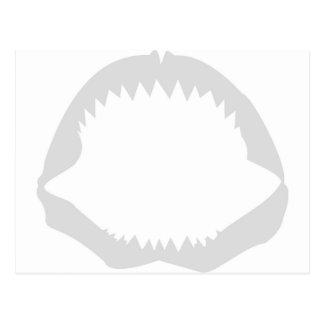 Jaws Postcard
